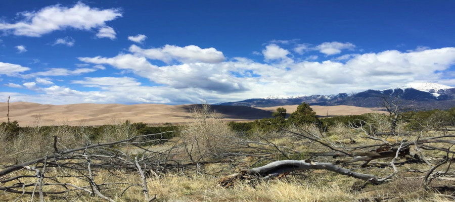 Free Family Day at the Great Sand Dunes National Park