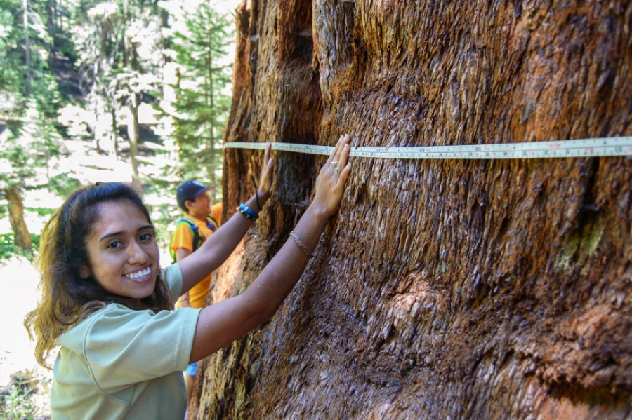 Sequoia National Park Celebra Latino Conservation Week